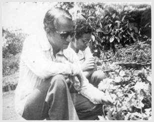 Ramrao and Sangram working with roses in 1986