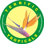 Terrific Tropicals  The Ideal Gifts